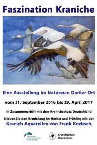 Ausstellung Faszination Kraniche im Natureum von Frank Koebsch