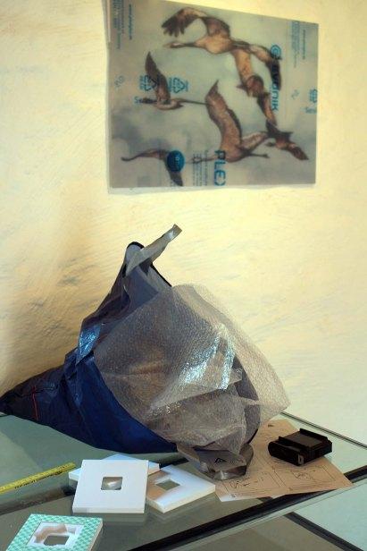 Vorbereitungen der Ausstellung Faszination Kraniche im Natureum am Darßer Ort (c) FRank Koebsch (2)