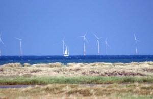 Windpark Baltic 1 in der Ostsee nördlich vom Darß (c) Frank Koebsch