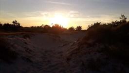 Abend über den Dünen am Darßer Ort (c) FRank Koebsch (1)
