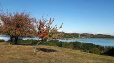 Herbstliche Aussicht auf Mönchgut von Klein Zicker nach Göhren (c) FRank Koebsch