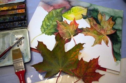 Malen von buntem Herbstlaub Aquarellen (c) FRank Koebsch (1)