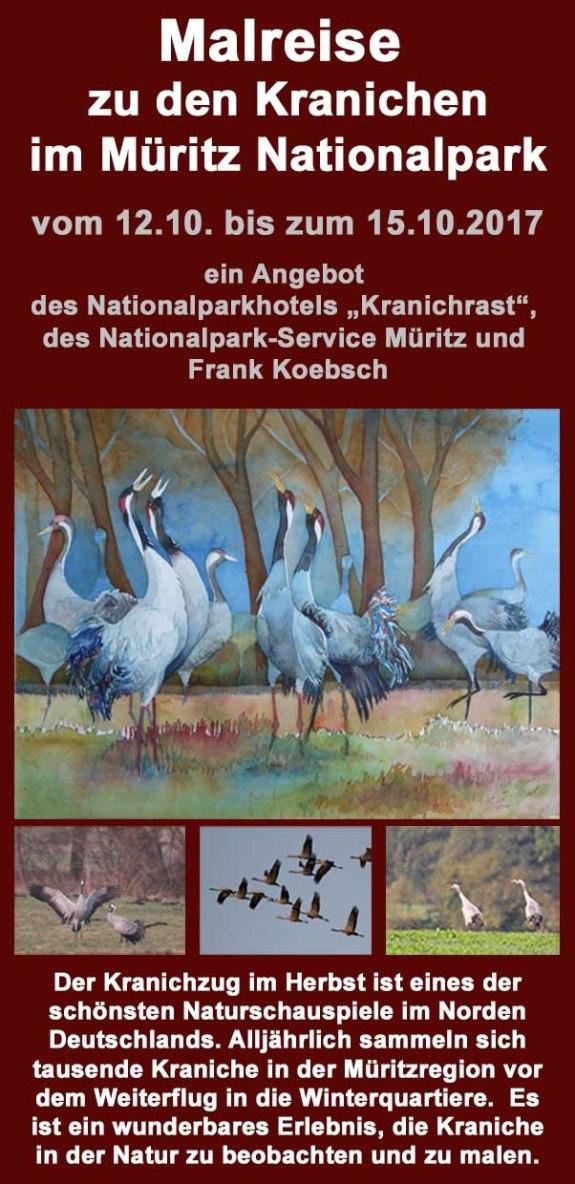 Malreise zu den Kranichen im Müritz Nationalpark 2017
