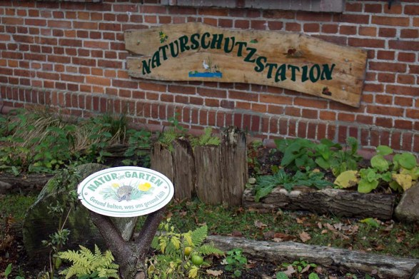 Naturschutzstation des NABU in Schwerin (c) FRank Koebsch (3)