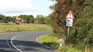 Verkehrsschild Otterwechsel bei Middelhagen auf dem Mönchgut (c) FRank Koebsch