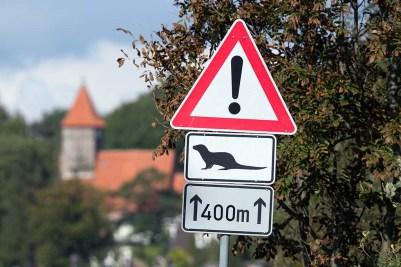 Verkehrsschild Otterwechsel bei Middelhagen auf Rügen (c) FRank Koebsch
