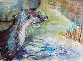 Verspielt und neugierig (c) ein Fischotterr in einem Aquarell von Frank Koebsch