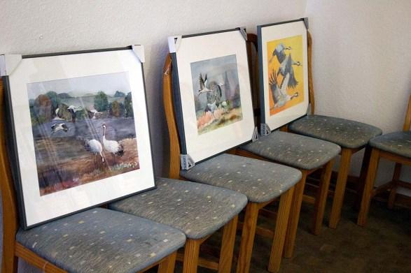 Vorbereitung für die Ausstellung von Kranich Aquarellen beim NABU Schwerin (c) FRank Koebsch (2)