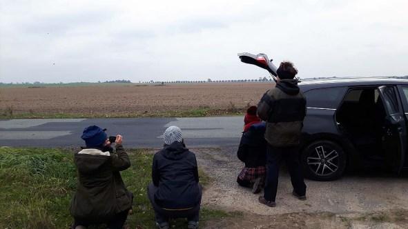 Kranichbeobachtungen auf der Malreise in den Müritz Nationalpark (c) FRank Koebsch (1)