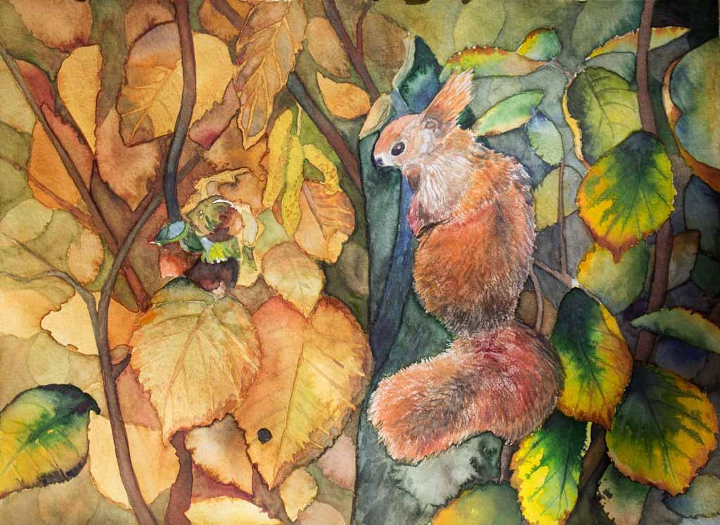 Versteckt (c) ein Eichhörnchen Aquarell von Frank Koebsch