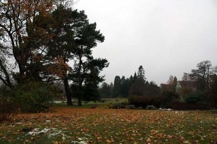 Botanischer Garten Rostock mit Schneeresten und bunten Herbstblättern (c) Frank Koebsch