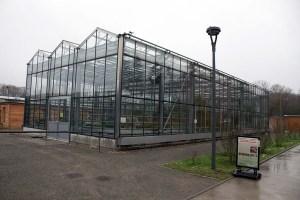 gläserne Orangerie im Botanischen Garten Rostock (c) FRank Koebsch