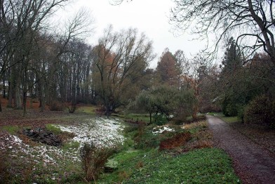 Herbstliche Landschaftsmotive im Botanischen Garten Rostock (c) Frank Koebsch.