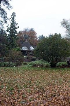 Reetdachhaus im herbstlichen Japangarten des Botanischen Garten Rostock (c) Frank Koebsch (1)
