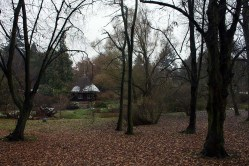 Reetdachhaus im herbstlichen Japangarten des Botanischen Garten Rostock (c) Frank Koebsch (3)