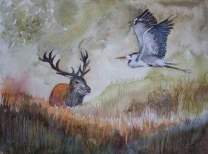 Treffpunkt Darßer Ort (c) Aquarell mit einem Reiher und einem Hirsch von Frank Koebsch