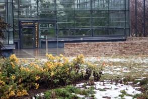 Tropenhaus der Loki-Schmidt-Gewächshäuser im Botanischen Garten Rostock (c) FRank Koebsch (1)