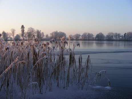 Das erste Eis auf dem Lüsewitzer See (c) FRank Koebsch