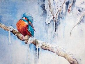 Kleiner Eiskönig © Eisvogel Aquarell von Hanka Koebsch