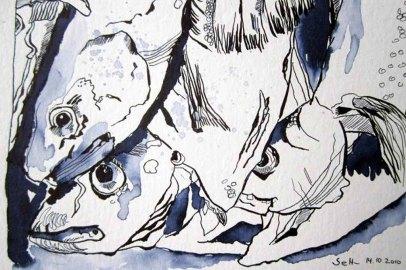 Susanne Haun –Fische – 17x 32 cm- Tusche auf Aquarellkarton