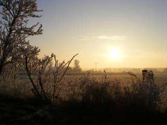 Wintermorgen (c) Frank Koebsch (1)