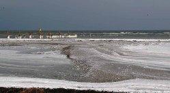 Eisiger Ostseestrand am Darßer Ort (c) FRank Koebsch (1)