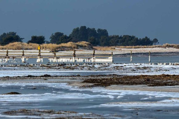 Winter an der Ostsee in der Krenzone des Nationalparks Vorpommersche Boddenlandschaft (c) Frank Koebsch (6)