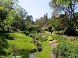 Frühling im Botanischen Garten Rostock (c) Dethardt Götze