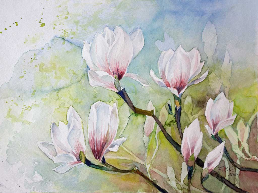 magnolien bl ten als fr hlingsboten c aquarell von frank koebsch bilder aquarelle vom meer. Black Bedroom Furniture Sets. Home Design Ideas
