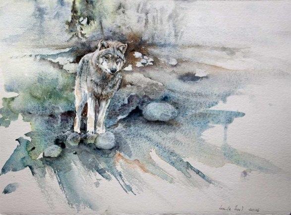 Suchender (c) ein Wolfs Aquarell von Hanka Koebsch