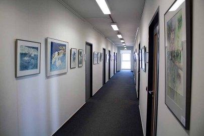 Einblick in unsere Ausstellung Wildes Land (c) Frank Koebsch (1)