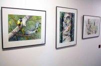 Einblick in unsere Ausstellung Wildes Land (c) Frank Koebsch (4)