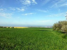 Frühlingshafte Aussicht am Leuchtturm Barstorf (c) Sonja Jannichsen (1)