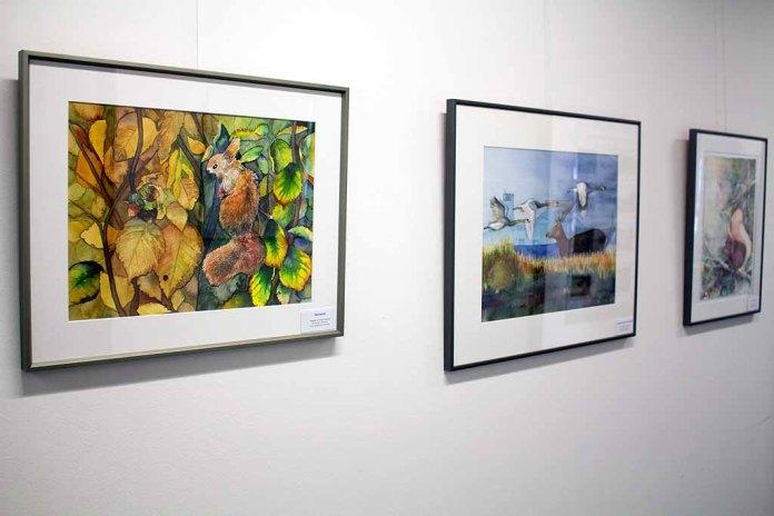 Wild Life Aquarelle in unserer Ausstellung im StALU MM Rostock (c) Frank Koebsch (2)