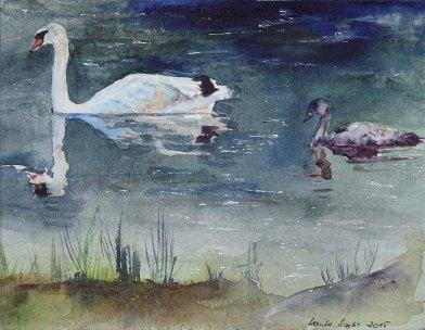 Folge mir (c) Aquarell mit Schwänen von Hanka Koebsch