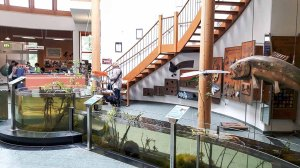 Ausstellung über das Wasser (c) FRank Koebsch (2)