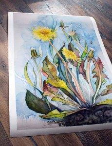 Druck des Aquarells - Farben der Sommerwiese auf Hahnemühle Papier Albrecht Dürer (c) FRank Koebsch (2)