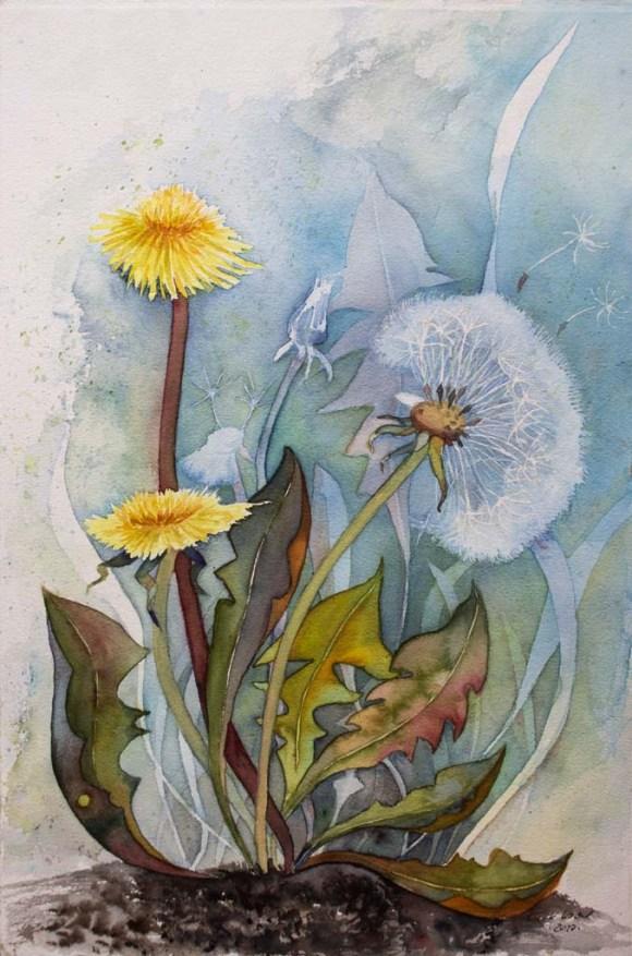 Pusteblumen - Immer wieder ein kleines Wunder (c) Aquarell von FRank Koebsch