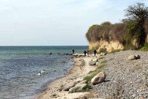 Steilküste von Klein Zicker (c) FRank Koebsch (2)