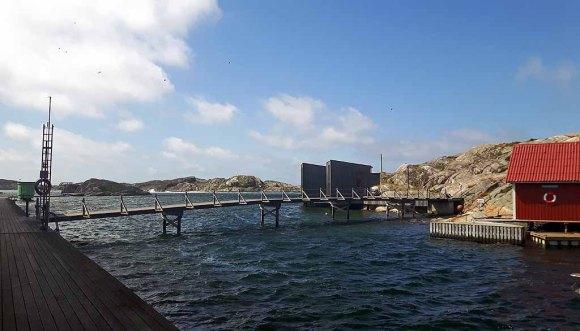 Ausblick vom Nordischen Aquarellmuseum auf der Insel Tjörn (c) Frank Koebsch (1)