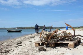 Fischerboote malen am Strand zwischen Klein Zicker und Thiessow (c) Frank Koebsch (6)