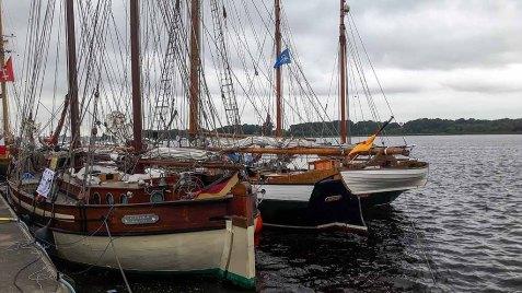 Hanse Sail 2017 (c) Frank Koebsch (3)