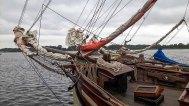 Hanse Sail 2017 (c) Frank Koebsch (4)