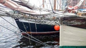 Hanse Sail 2017 (c) Frank Koebsch (5)
