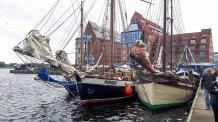 Hanse Sail 2017 (c) Frank Koebsch (6)