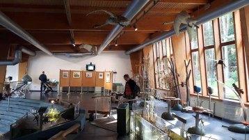 Ausstellung im Umweltnildungszentrum im Wildpark MV (c) Frank Koebsch