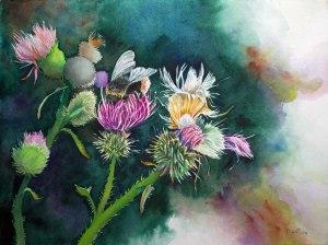 Distelblüten im Spätsommer (c) Aquarell von Frank Koebsch