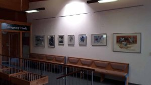 Erste Einblicke in unsere Ausstellung - Wildes Land - im Wildpark MV (c) FRank Koebsch (4)