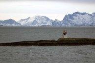 Küste bei Bodo (c) FRank Koebsch (2)