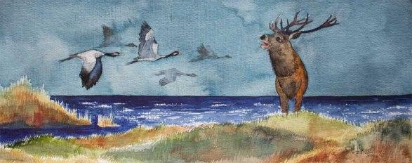Konzertteilnehmer im Herbst an der Ostsee (c) Aquarell mit Kranichen und Hirsch von Frank Koebsch